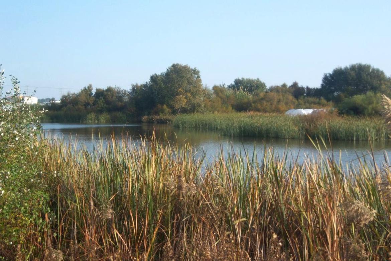 Paraje Natural Laguna de Palos y las Madres Huelva Lagunas1